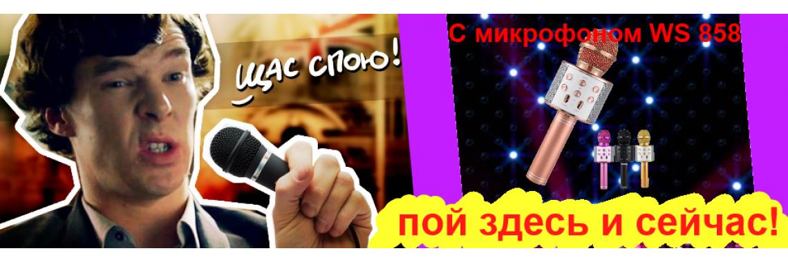 Караоке-микрофон WS 858
