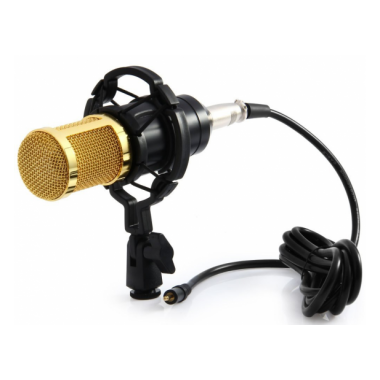 Микрофон студийный конденсаторный M-800